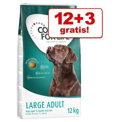 Duże opakowanie + 3 / 1,5 kg gratis! Concept for Life karma dla psa - Large Sensitive, 12 + 3 kg (4260358512785)