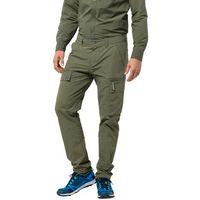 Jack wolfskin Męskie spodnie trekkingowe lakeside pants m woodland green - 98