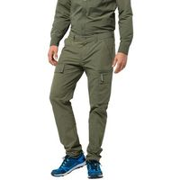 Męskie spodnie trekkingowe lakeside pants m woodland green - 58, Jack wolfskin