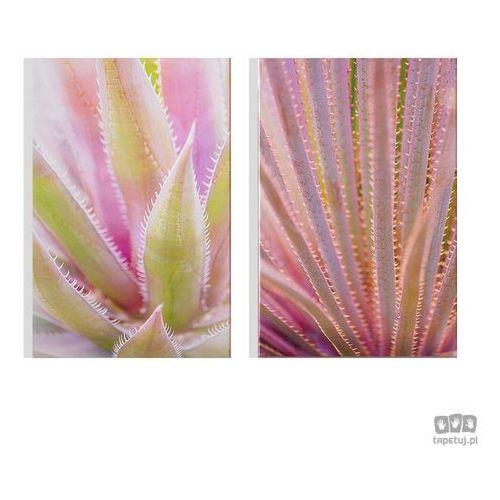 Obraz blushed tropics 104578 marki Graham&brown