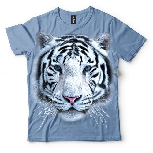 Tygrys Syberyjski Biały, kolor biały