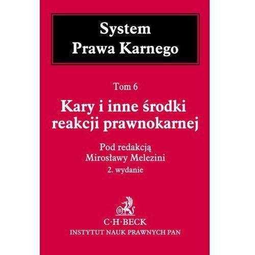 Kary i inne środki reakcji prawnokarnej System Prawa Karnego Tom 6 - Mirosława Melezini, oprawa twarda