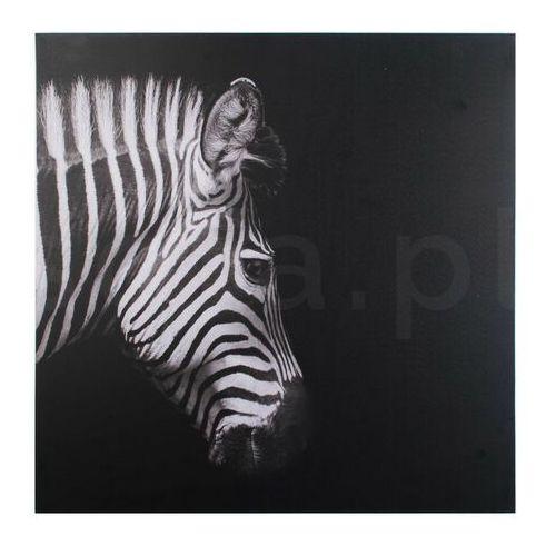 Obraz 70x70x1,8cm zebra marki Sofa.pl