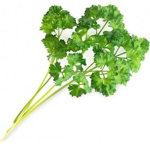 Wkład nasienny lingot zioła podstawowe pietruszka kędzierzawa marki Veritable