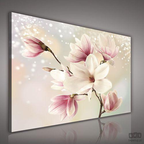 Consalnet Obraz kwiaty na srebrnym tle pp2134