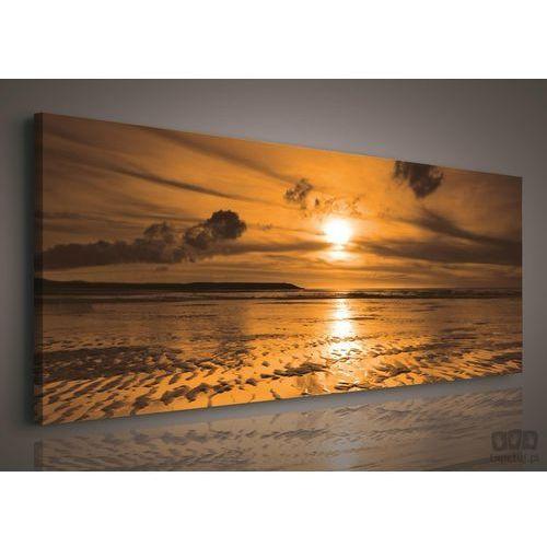 Obraz zachód słońca nad morzem pp104bo3 marki Consalnet