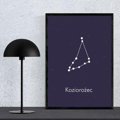 Wally - piękno dekoracji Plakat znak zodiaku koziorożec 111