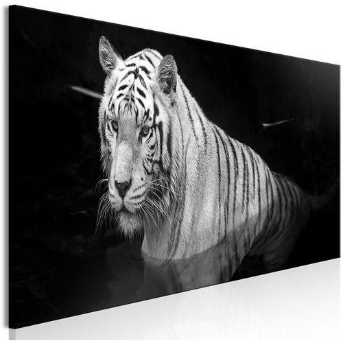 Artgeist Obraz - lśniący tygrys (1-częściowy) czarno-biały wąski