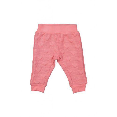 Joggery spodnie niemowlęce 5l35a2 marki Dirkje