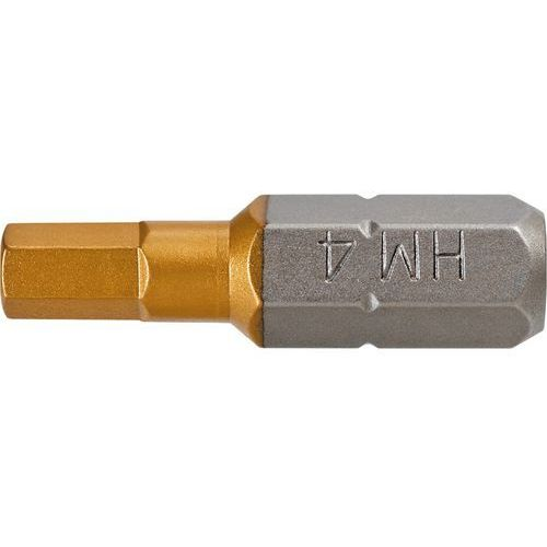 Końcówki wkrętakowe GRAPHITE 57H969 HEX5 x 25 mm (2 sztuki) (5902062579690)