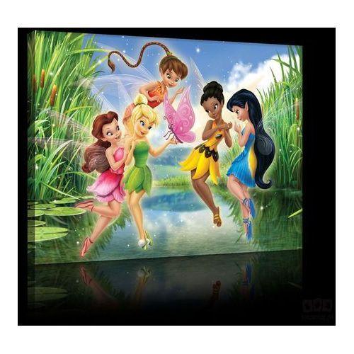 Obraz DISNEY Fairies: Tinker Bell, Iridessa PPD29, PPD29