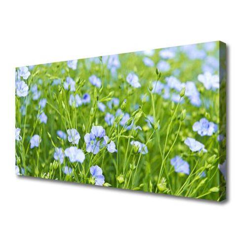 Obraz na Płótnie Kwiaty Trawa Roślina Natura