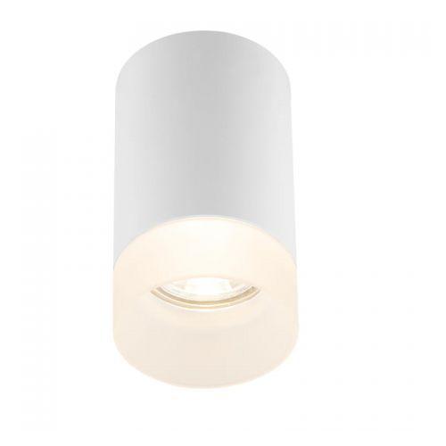 Jenny Tuba Globo Lighting 12017W