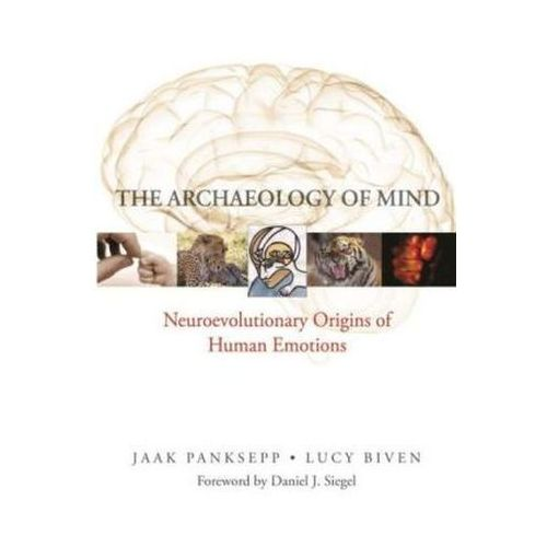 The Archaeology Of Mind : Neuroevolutionary Origins Of Human Emotion