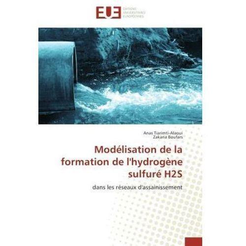 Modelisation de La Formation de L'Hydrogene Sulfure H2s (9783841780553)
