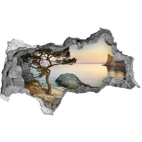 Dziura 3d w ścianie naklejka drzewo nad morzem marki Wallmuralia.pl