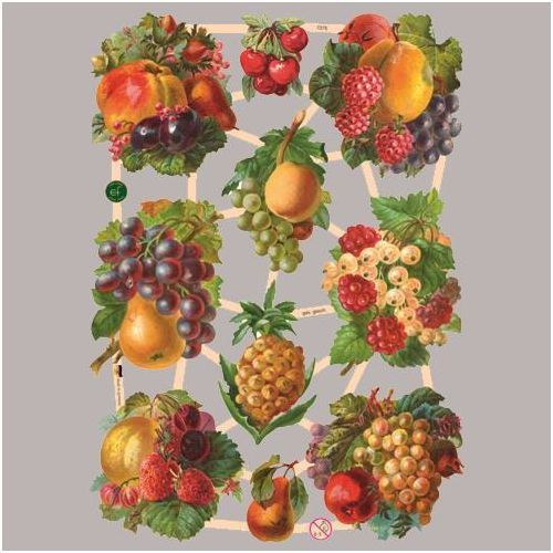 Obrazki scrapooking 24x17 cm - owoce - owo marki Efco