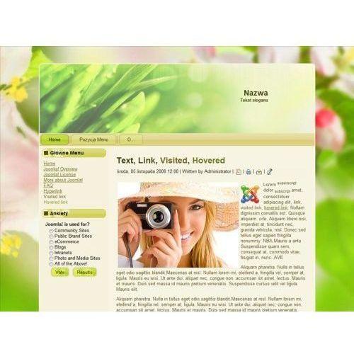 Netstar Szablony www joomla cms - 1 szablon strony + slider