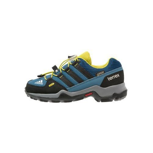 adidas Performance TERREX GTX Półbuty trekkingowe tech steel/core black/university lime