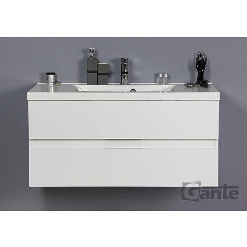 Szafka z umywalką 100/48 seria ele b marki Gante