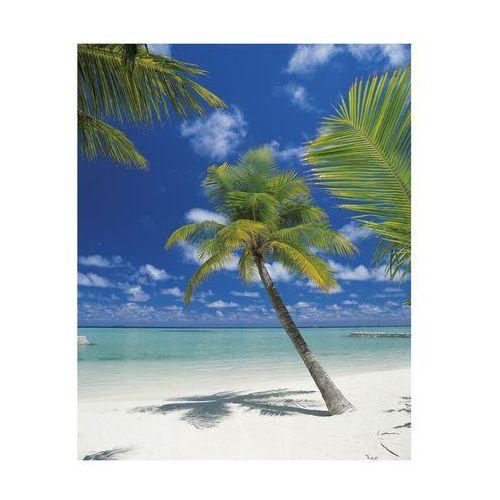 Komar Fototapeta papierowa ari atoll
