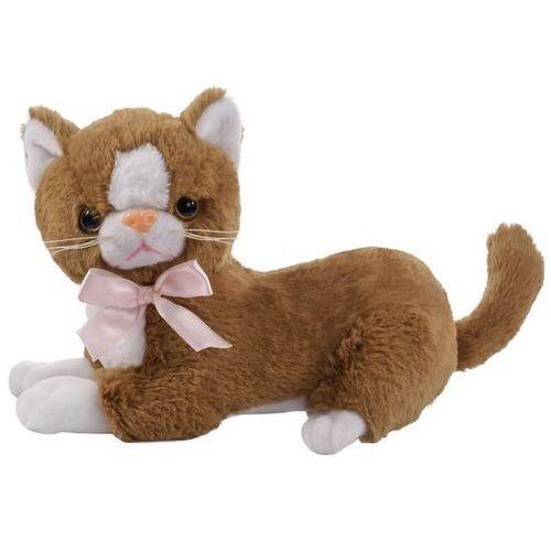 brązowy kot flico z kokardą marki Beppe