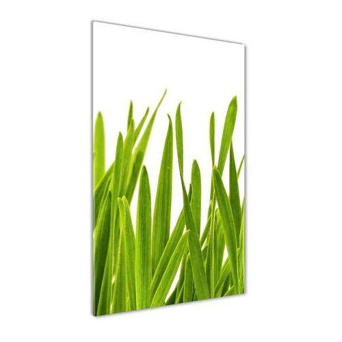 Foto obraz akrylowy do salonu Zielona trawa