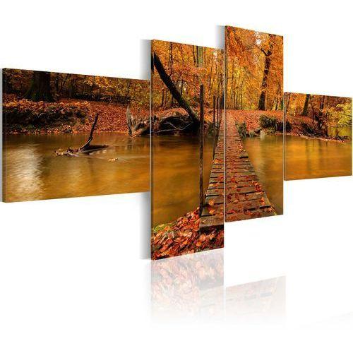 Obraz - Kładka przez leśny strumyk