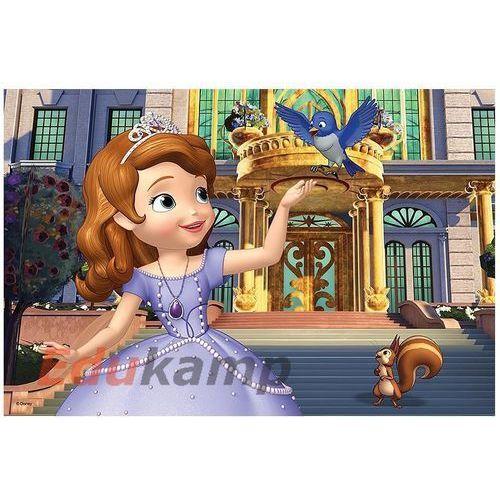 Puzzle 60 Przed Pałacem - Jej wysokość Zosia, AM_5900511172393