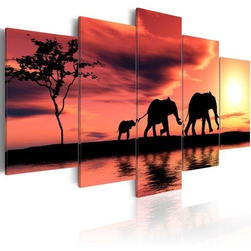 Obraz - rodzina afrykańskich słoni marki Artgeist