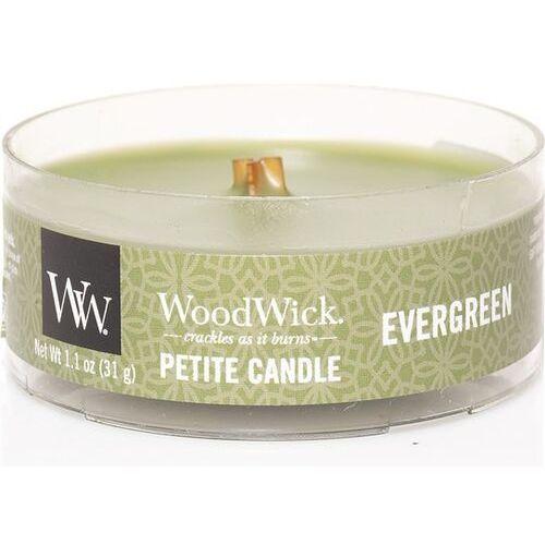 Woodwick świeca petite evergreen 31g (5038581054063)