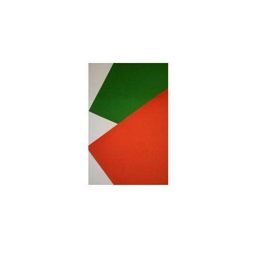 Karton A2 250g Czerwony + zielony platynowy(20szt)