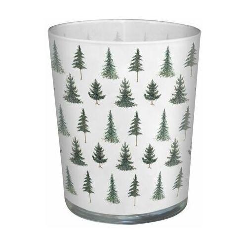 Paw decor Świeca zapachowa w szkle conifer forest miód (5906360473070)