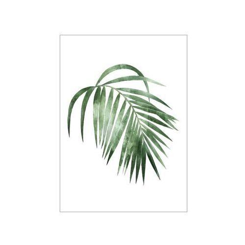 Consalnet Obraz na pilśni palma 50 x 70 cm