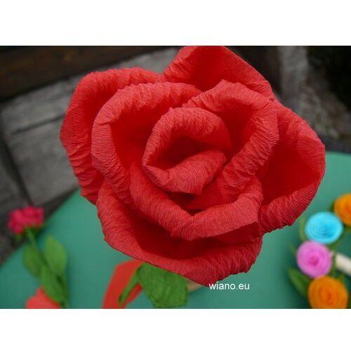 Kwiaty z bibuły - Róża z bibuły (jg-1)