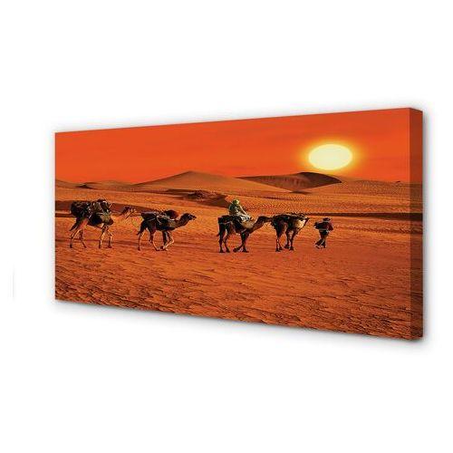 Obrazy na płótnie wielbłądy ludzie pustynia słońce niebo marki Tulup.pl