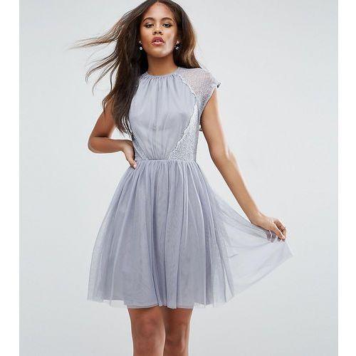 ASOS TALL PREMIUM Lace Tulle Mini Prom Dress - Grey, kolor szary