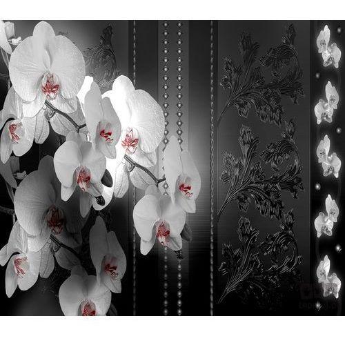 Consalnet Fototapeta gałązka storczyka w odcieniach szarości 1328