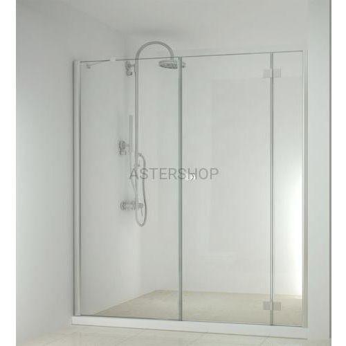 SMARTFLEX drzwi prysznicowe do wnęki skrzydłowe, prawe 150x195cm D1281R/D1170, D1281RD1170