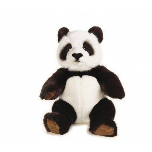 Panda Wielka, GXP-647669
