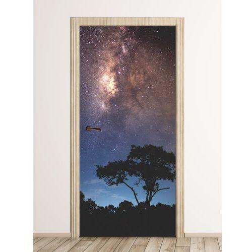 Fototapeta na drzwi gwieździste niebo FP 6156