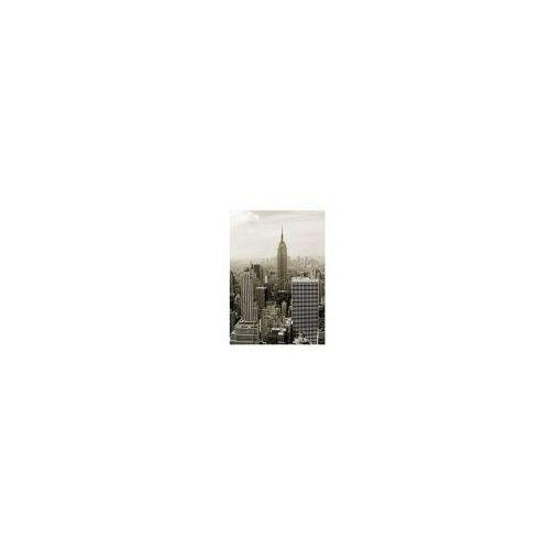 Nowy jork. manhattan panorama w sepii - reprodukcja marki Galeria plakatu