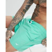 Hollister Core Guard Swim Shorts Icon Seagull Logo in Green - Green, kolor zielony