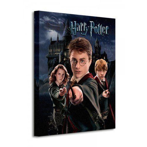 Harry Potter Harry Ron Hermione - Obraz na płótnie z kategorii Fototapety