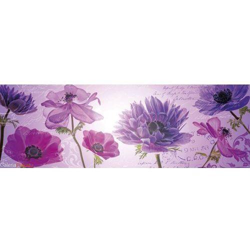 Purple Summer - Maki Chabry... - plakat
