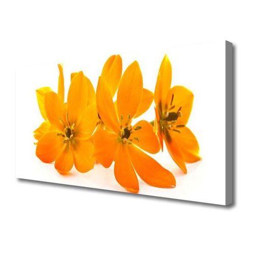 Obraz na płótnie pomarańczowe roślina kwiaty marki Tulup.pl