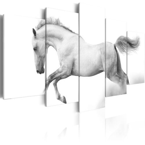 Obraz - koń - pasja i wolność marki Artgeist