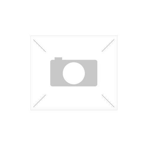 Obraz Stalowa oziębłość 020101-202 - produkt z kategorii- Obrazy