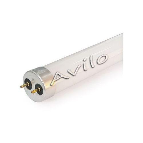 Świetlówka LED / GLASS - T8 (60cm) - 8 W - BIAŁY - NEUTRALNY (Dwustronna)