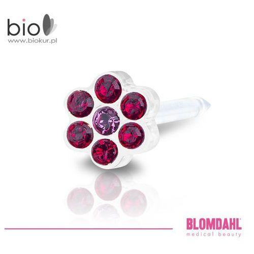 Kolczyk do przekłuwania uszu Blomdahl - Daisy Ruby / Rose 5 mm